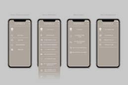 Дизайн главного меню и внутренних страниц мобильного приложения